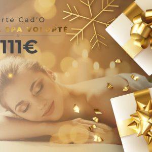 carte-cadeau-111e